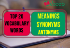 Vocabulary words with meaning English Urdu and Usage Sentence with Picture and PDF 3