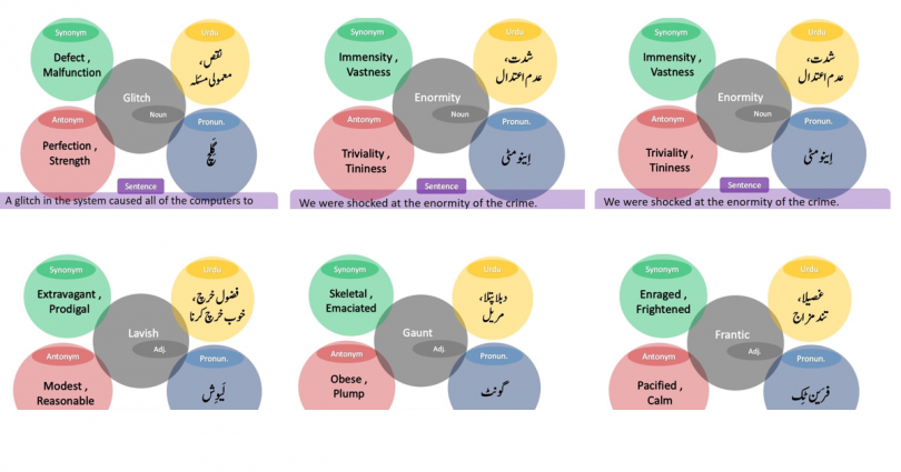 Top 20 Vocab words with meaning English/Urdu and Usage/Sentence