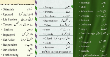 Most common vocabulary words in english with meaning in urdu with pdf
