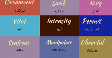 words with meaning English/Urdu and Usage/Sentence