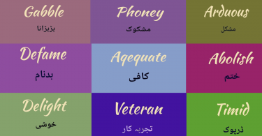 Hard vocabulary words with Urdu meaning | Vocabulary for exam