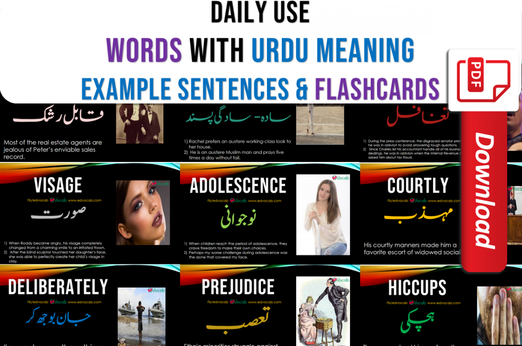 Daily use English words pdf with urdu meaning and example sentences with pdf flashcards