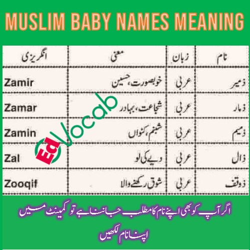 Name meaning of Zamir, Zamar, Zamin, Zal and Zooqif