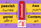 Opposite Words in English Vocabulary Words with meaning pdf