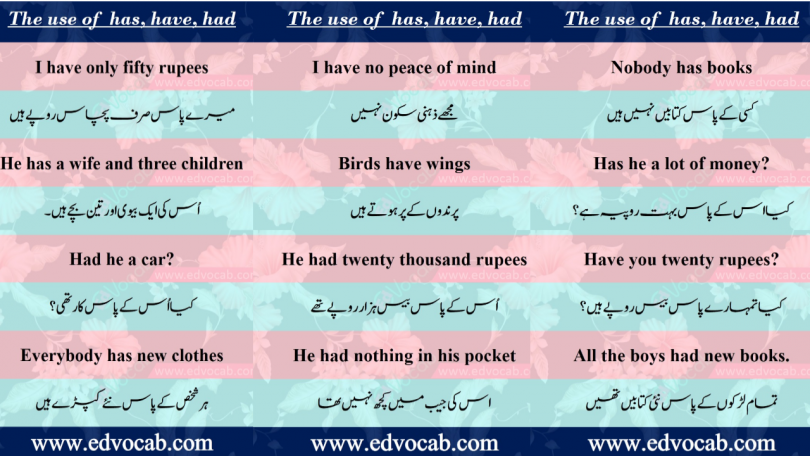 Use of has have had in sentences pdf | When to use had in a sentence