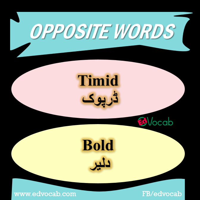 vocabulary words with meaning synonyms and antonyms pdf