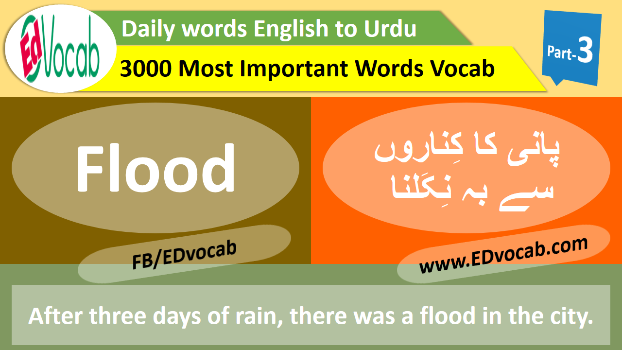 daily use english words with meaning