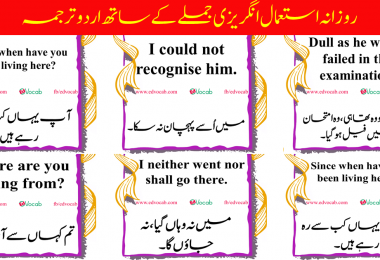Daily use english sentences with urdu translation | 50 daily use english sentences