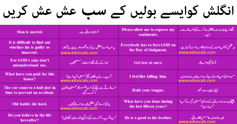 English Language Course In Urdu 100 Days Pdf Free Download