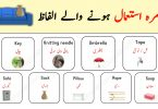 Daily Used Vocabulary with Urdu Meanings