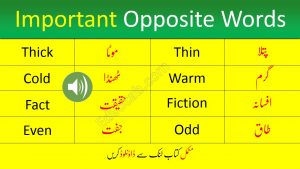Download Words Opposites Pdf booklet Now