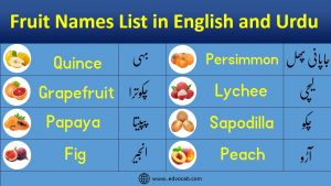 Names of all Fruits in English and Urdu with Pictures
