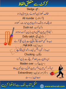 Cricket Vocabulary Words in Urdu and Hindi