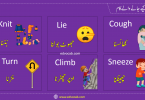 Daily Actions Words List with Pictures