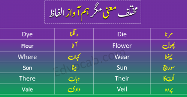 Homophones in Urdu
