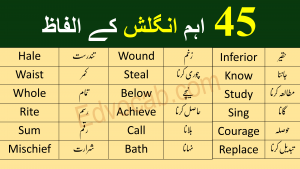 Download Basic English Vocabulary in Urdu PDF Booklet Now