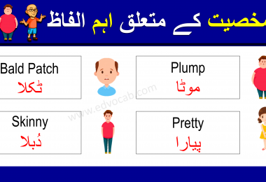 Download Words Used To Describe a Person PDF Booklet Now