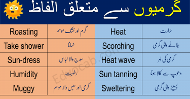 Download Download Vocabulary Words PDF Booklet Now PDF Booklet Now