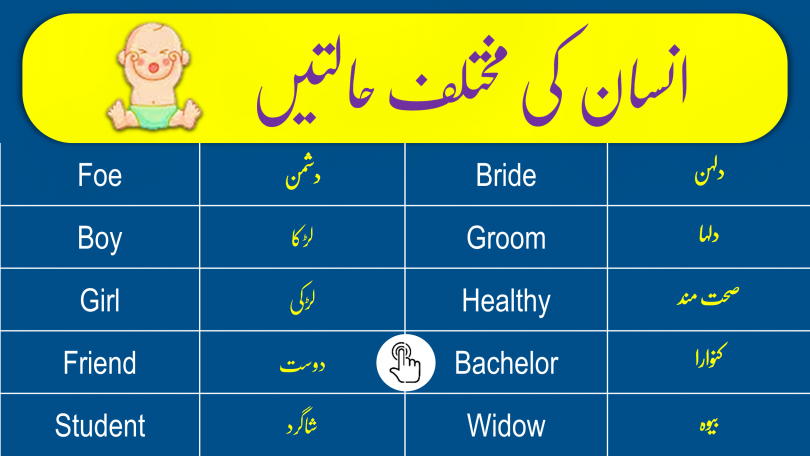 Click to Download Phases of Man in English and Urdu
