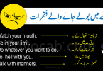 Download Sentences Used in Anger in Urdu and Hindi PDF Booklet